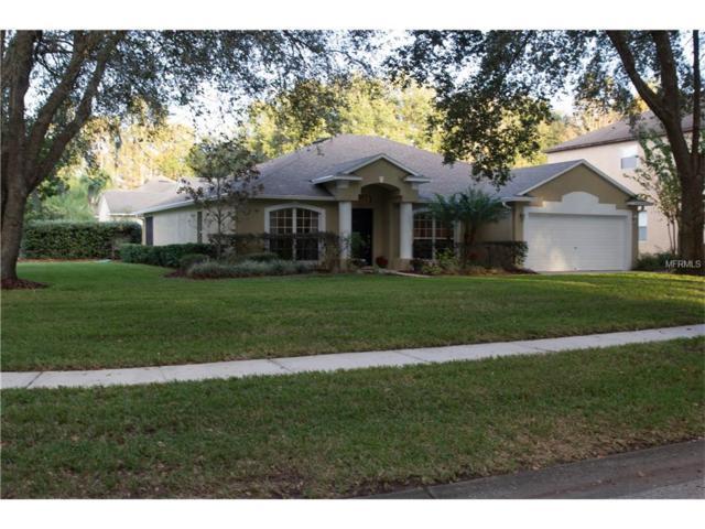 16209 Swenson Terrace, Lutz, FL 33549 (MLS #T2917087) :: Team Bohannon Keller Williams, Tampa Properties