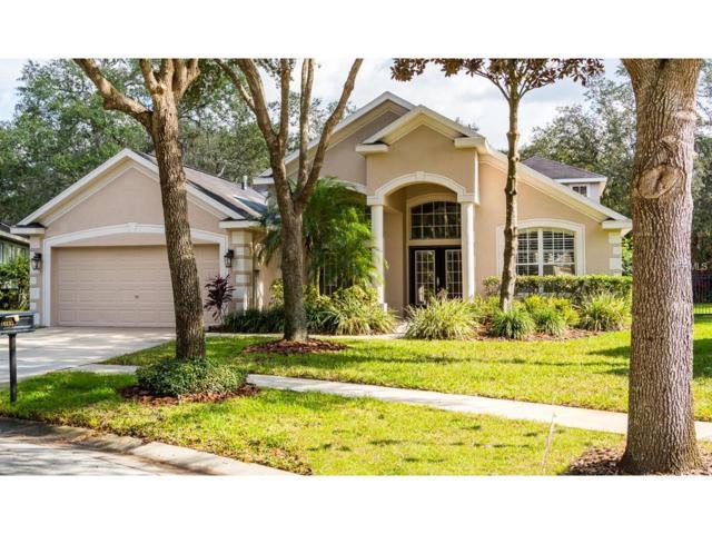 6133 Whimbrelwood Drive, Lithia, FL 33547 (MLS #T2917128) :: Team Turk Real Estate