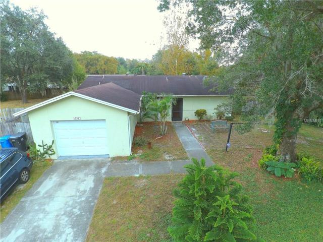 13913 Bridgeport Drive, Tampa, FL 33625 (MLS #T2917144) :: The Fowkes Group