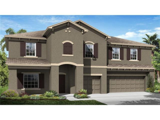 33246 Azalea Ridge Drive, Wesley Chapel, FL 33545 (MLS #T2917304) :: Team Bohannon Keller Williams, Tampa Properties