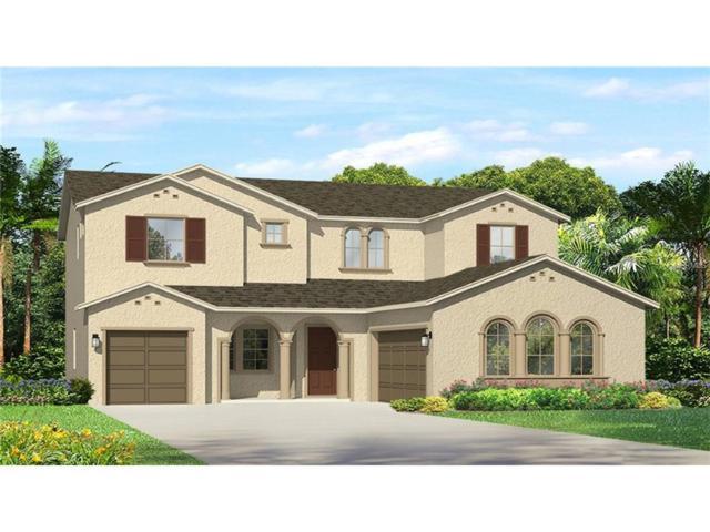 29368 Picana Lane, Wesley Chapel, FL 33543 (MLS #T2917309) :: Team Bohannon Keller Williams, Tampa Properties