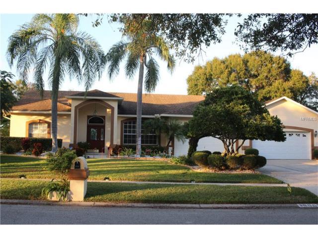 3806 Castle Key Lane, Valrico, FL 33594 (MLS #T2917322) :: Team Turk Real Estate