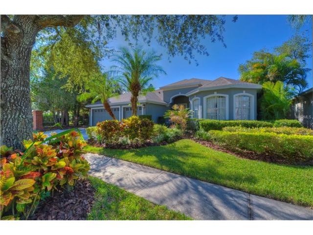 10502 Castleford Way, Tampa, FL 33626 (MLS #T2917390) :: The Duncan Duo Team