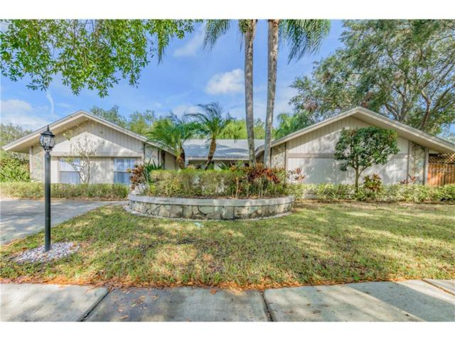4323 Southpark Drive, Tampa, FL 33624 (MLS #T2917511) :: The Fowkes Group