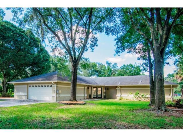 11314 N Armenia Avenue, Tampa, FL 33612 (MLS #T2917579) :: Team Bohannon Keller Williams, Tampa Properties