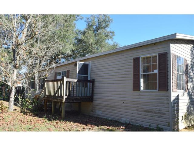 12711 Browns Berry Road, Dover, FL 33527 (MLS #T2917678) :: The Fowkes Group