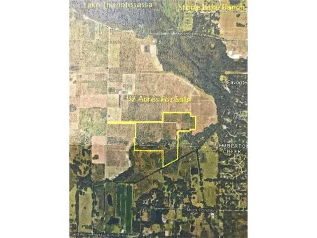 12215 Collins  Ranch Rd, Thonotosassa, FL 33592 (MLS #T2917695) :: Team Bohannon Keller Williams, Tampa Properties