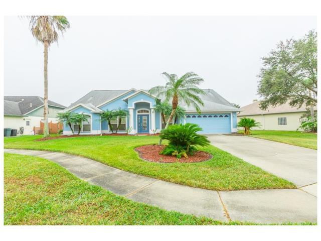 28804 Crooked Stick Court, Wesley Chapel, FL 33543 (MLS #T2917742) :: Team Bohannon Keller Williams, Tampa Properties