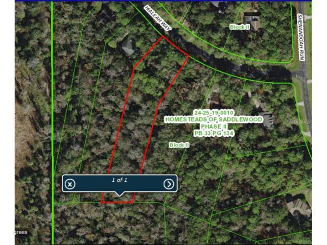 0 Hialeah Way, Wesley Chapel, FL 33544 (MLS #T2917746) :: Team Bohannon Keller Williams, Tampa Properties