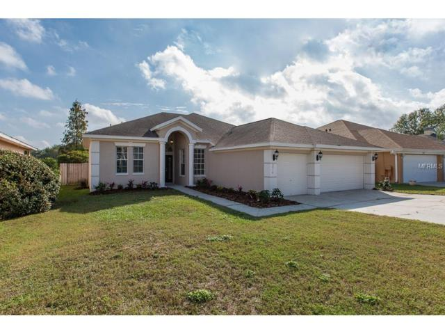 23116 Emerson Way, Land O Lakes, FL 34639 (MLS #T2917749) :: Team Bohannon Keller Williams, Tampa Properties