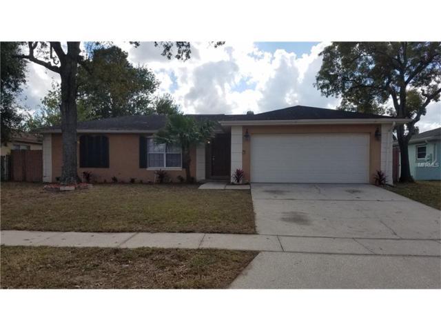 1907 Derbywood Drive, Brandon, FL 33510 (MLS #T2917756) :: Team Turk Real Estate