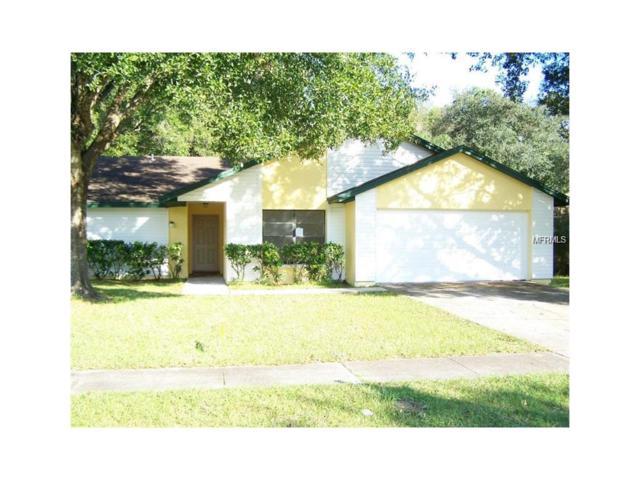 17813 Cranbrook Drive, Lutz, FL 33549 (MLS #T2917770) :: Team Bohannon Keller Williams, Tampa Properties