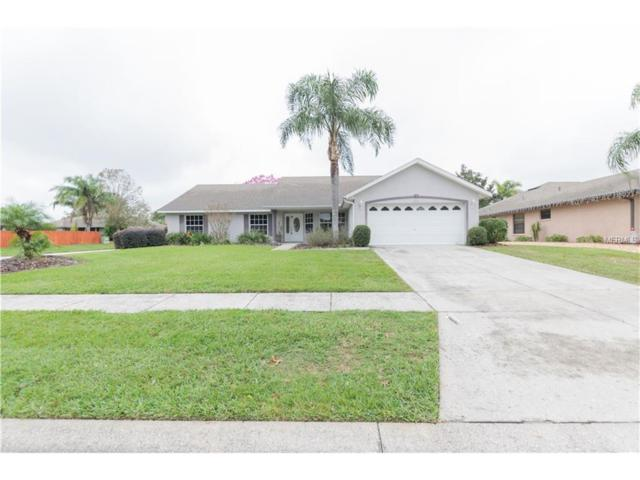 4850 Abaco Drive, Tavares, FL 32778 (MLS #T2917794) :: The Fowkes Group