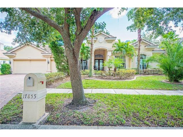 17855 Arbor Greene Drive, Tampa, FL 33647 (MLS #T2917807) :: Team Bohannon Keller Williams, Tampa Properties