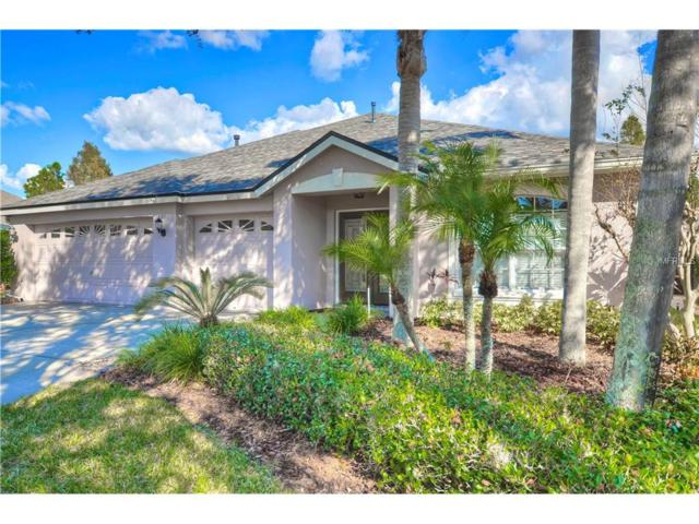 10320 Abbotsford Drive, Tampa, FL 33626 (MLS #T2917927) :: Team Bohannon Keller Williams, Tampa Properties