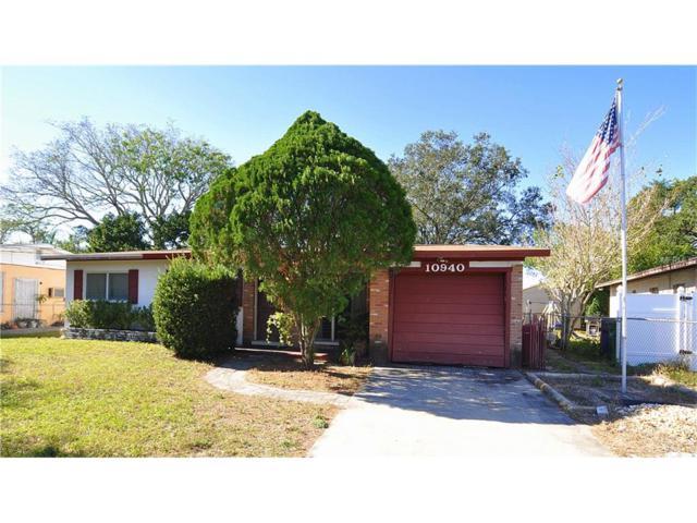 10940 N Hyacinth Avenue, Tampa, FL 33612 (MLS #T2918014) :: The Fowkes Group