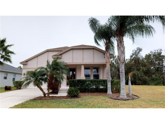 21644 Billowy Jaunt Drive, Land O Lakes, FL 34637 (MLS #T2918037) :: The Fowkes Group