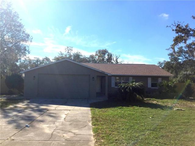16702 Richloam Lane, Spring Hill, FL 34610 (MLS #T2918070) :: The Fowkes Group