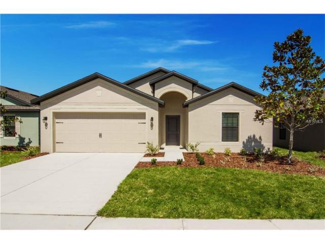 830 Laurel View Way, Groveland, FL 34736 (MLS #T2918072) :: Premium Properties Real Estate Services