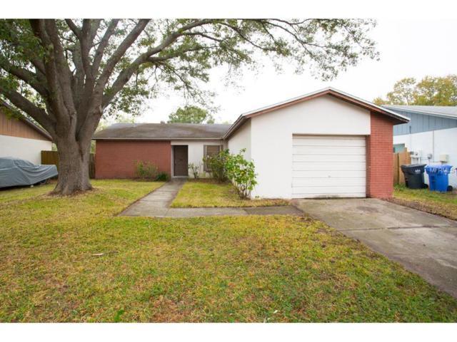 1049 Old Field Drive, Brandon, FL 33511 (MLS #T2918088) :: Team Turk Real Estate