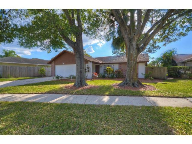 5112 Brynn Mawr Drive, Tampa, FL 33624 (MLS #T2918107) :: The Duncan Duo Team