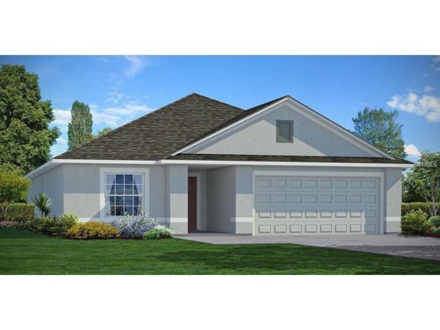 10105 Carp Hollow Road, Sun City Center, FL 33573 (MLS #T2918121) :: Team Turk Real Estate