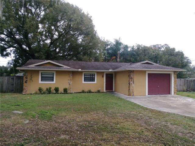 1811 Pine Street, Valrico, FL 33594 (MLS #T2918126) :: Team Turk Real Estate