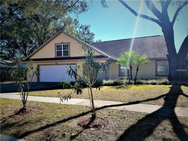 707 Forest Hills Drive, Brandon, FL 33510 (MLS #T2918127) :: Arruda Family Real Estate Team