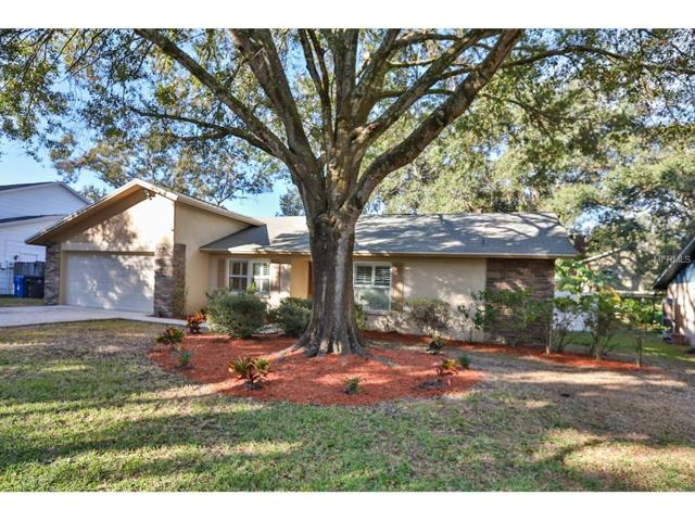 1614 Burning Tree Lane, Brandon, FL 33510 (MLS #T2918293) :: Arruda Family Real Estate Team