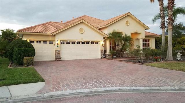 10847 Barbados Isle Drive, Tampa, FL 33647 (MLS #T2918339) :: Team Bohannon Keller Williams, Tampa Properties