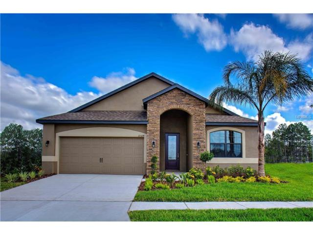 12220 Ballentrae Forest Drive, Riverview, FL 33579 (MLS #T2918363) :: Team Turk Real Estate