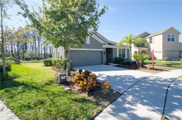 5329 Dittany Court, Land O Lakes, FL 34639 (MLS #T2918403) :: Arruda Family Real Estate Team
