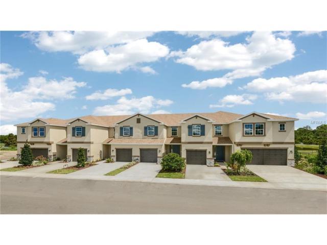 12307 Bayou Flats Lane, Tampa, FL 33635 (MLS #T2918431) :: Team Turk Real Estate