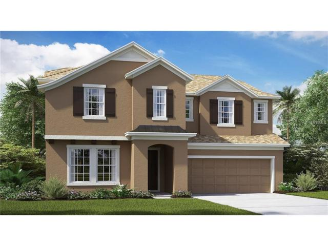 12109 Rustic River Way, Tampa, FL 33635 (MLS #T2918443) :: Team Turk Real Estate