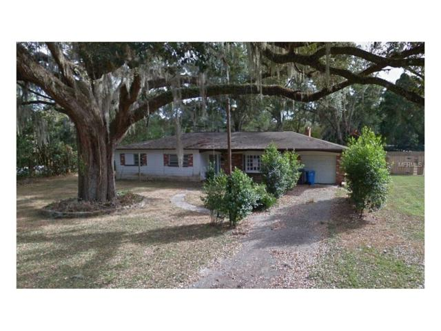 211 James Street, Brandon, FL 33510 (MLS #T2918483) :: Team Turk Real Estate