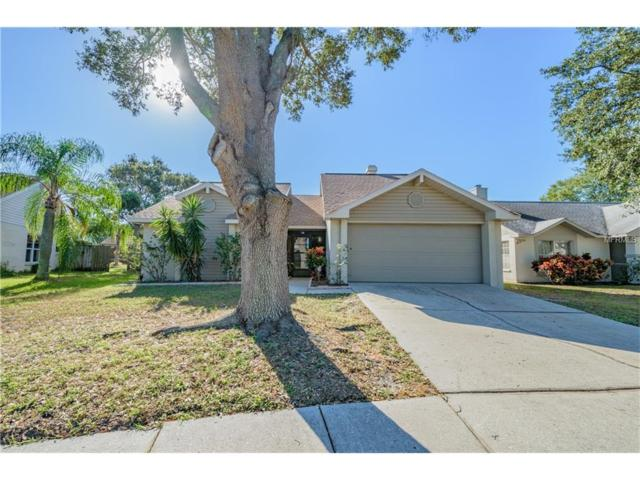 1111 Tuxford Drive, Brandon, FL 33511 (MLS #T2918484) :: Arruda Family Real Estate Team