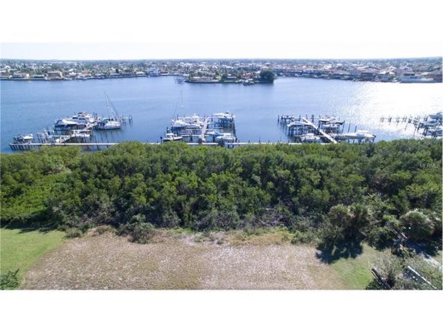 6103 Lagomar Lane, Apollo Beach, FL 33572 (MLS #T2918488) :: Arruda Family Real Estate Team