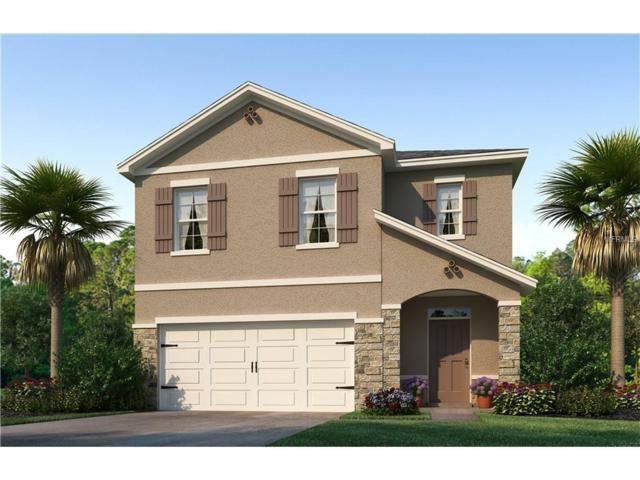 1031 Ashentree Drive, Plant City, FL 33563 (MLS #T2918528) :: Team Turk Real Estate