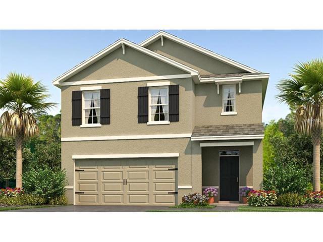 1028 Ashentree Drive, Plant City, FL 33563 (MLS #T2918532) :: Team Turk Real Estate