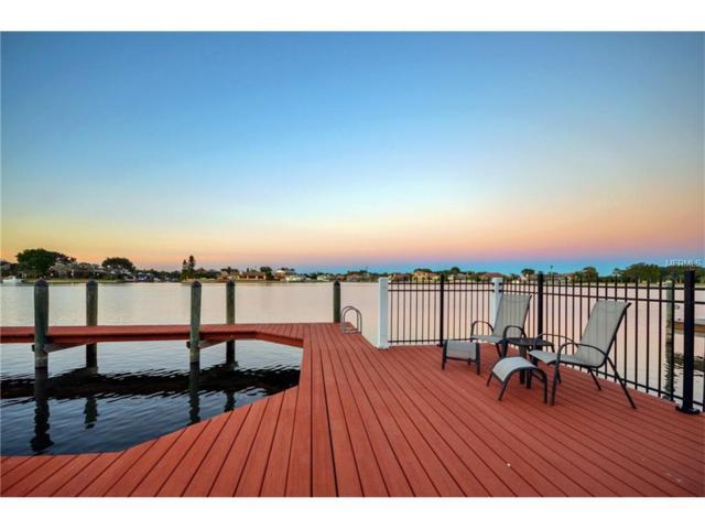 9817 Bay Island Drive, Tampa, FL 33615 (MLS #T2918549) :: Team Turk Real Estate