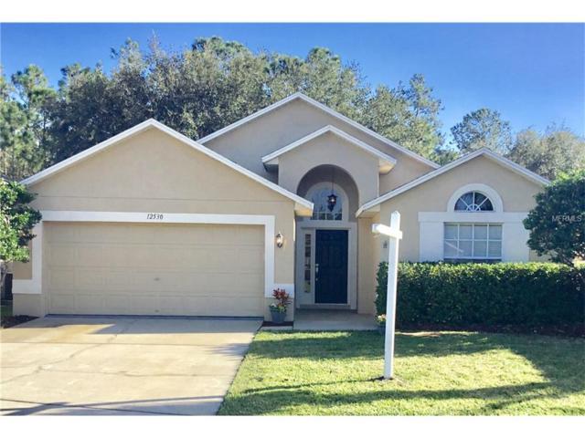12530 Blazing Star Drive, Tampa, FL 33626 (MLS #T2918552) :: Team Turk Real Estate