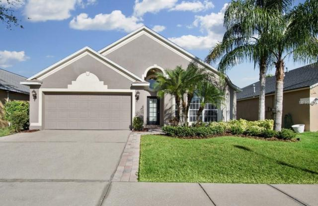 1212 Horsemint Lane, Wesley Chapel, FL 33543 (MLS #T2918561) :: Arruda Family Real Estate Team