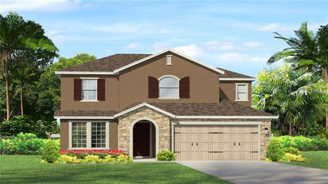 28907 Revaro Lane, Wesley Chapel, FL 33543 (MLS #T2918679) :: Arruda Family Real Estate Team
