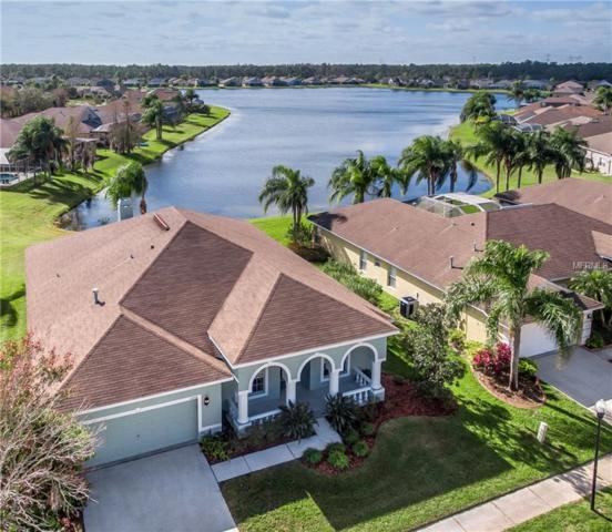 12706 Princewood Court, Tampa, FL 33626 (MLS #T2918771) :: Delgado Home Team at Keller Williams