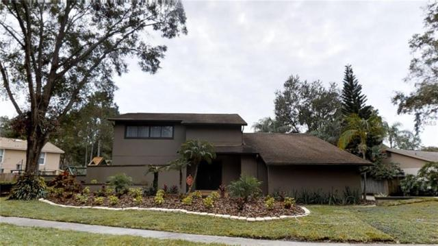 13704 Wilkes Drive, Tampa, FL 33618 (MLS #T2918802) :: Arruda Family Real Estate Team