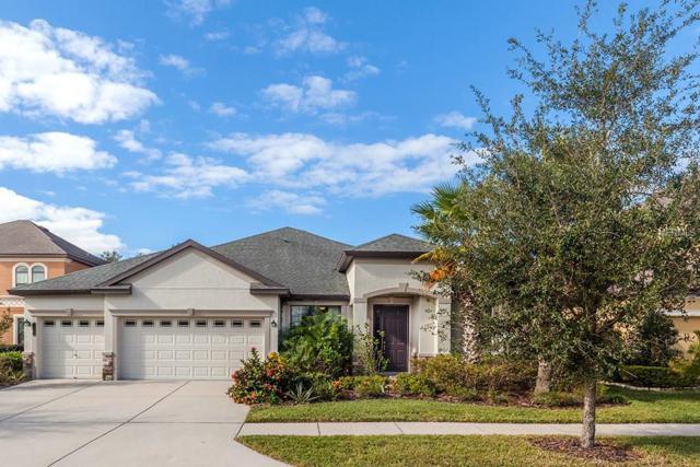 7961 Hampton Lake Drive, Tampa, FL 33647 (MLS #T2918836) :: Team Bohannon Keller Williams, Tampa Properties