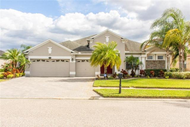 16219 Ivy Lake Drive, Odessa, FL 33556 (MLS #T2918885) :: Baird Realty Group