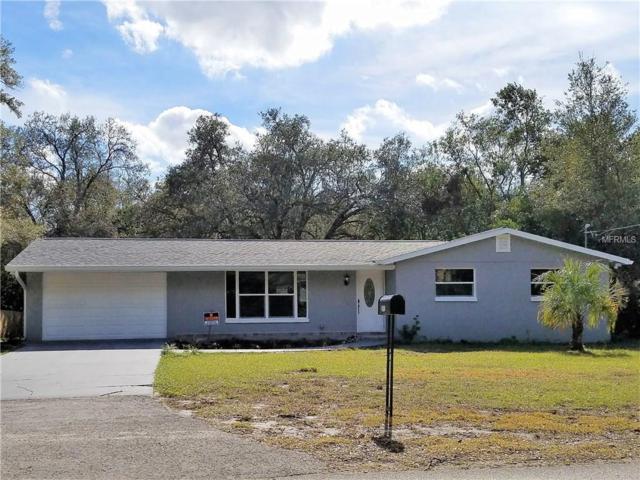 2413 Vandervort Road, Lutz, FL 33549 (MLS #T2918893) :: Arruda Family Real Estate Team
