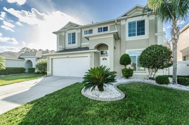 25404 Geddy Drive, Land O Lakes, FL 34639 (MLS #T2918919) :: Arruda Family Real Estate Team