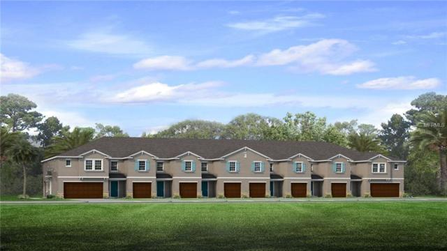 3305 Painted Blossom Court, Lutz, FL 33548 (MLS #T2918923) :: Arruda Family Real Estate Team